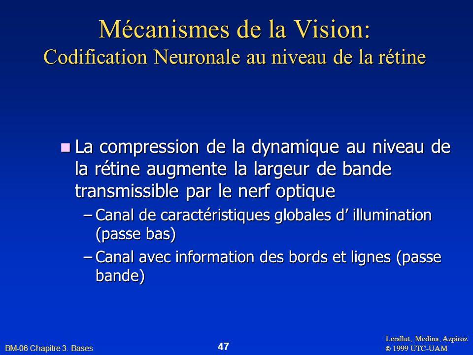 Lerallut, Medina, Azpiroz © 1999 UTC-UAM BM-06 Chapitre 3. Bases 47 Mécanismes de la Vision: Codification Neuronale au niveau de la rétine n La compre