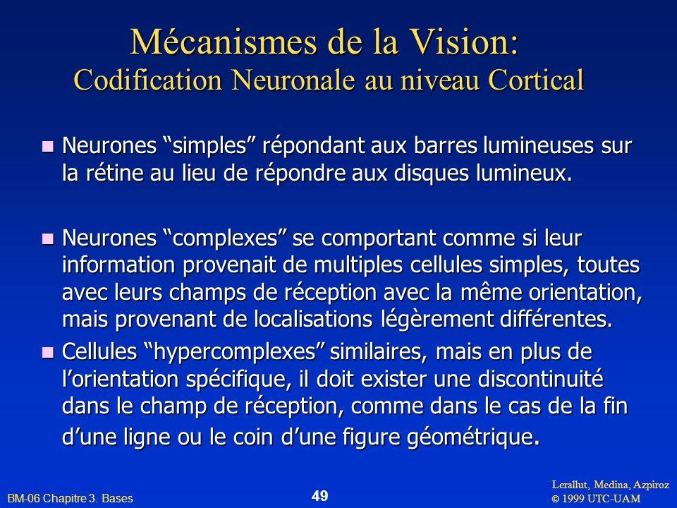 Lerallut, Medina, Azpiroz © 1999 UTC-UAM BM-06 Chapitre 3. Bases 49 Mécanismes de la Vision: Codification Neuronale au niveau Cortical n Neurones simp