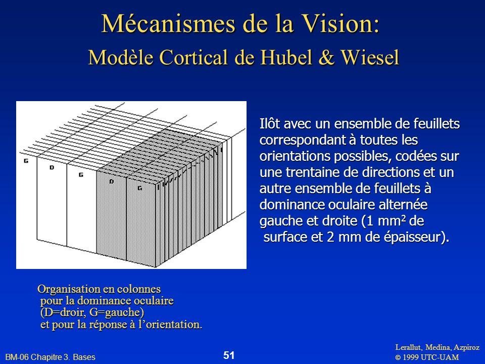 Lerallut, Medina, Azpiroz © 1999 UTC-UAM BM-06 Chapitre 3. Bases 51 Mécanismes de la Vision: Modèle Cortical de Hubel & Wiesel Ilôt avec un ensemble d