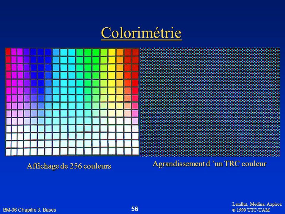 Lerallut, Medina, Azpiroz © 1999 UTC-UAM BM-06 Chapitre 3. Bases 56 Colorimétrie Affichage de 256 couleurs Agrandissement d un TRC couleur