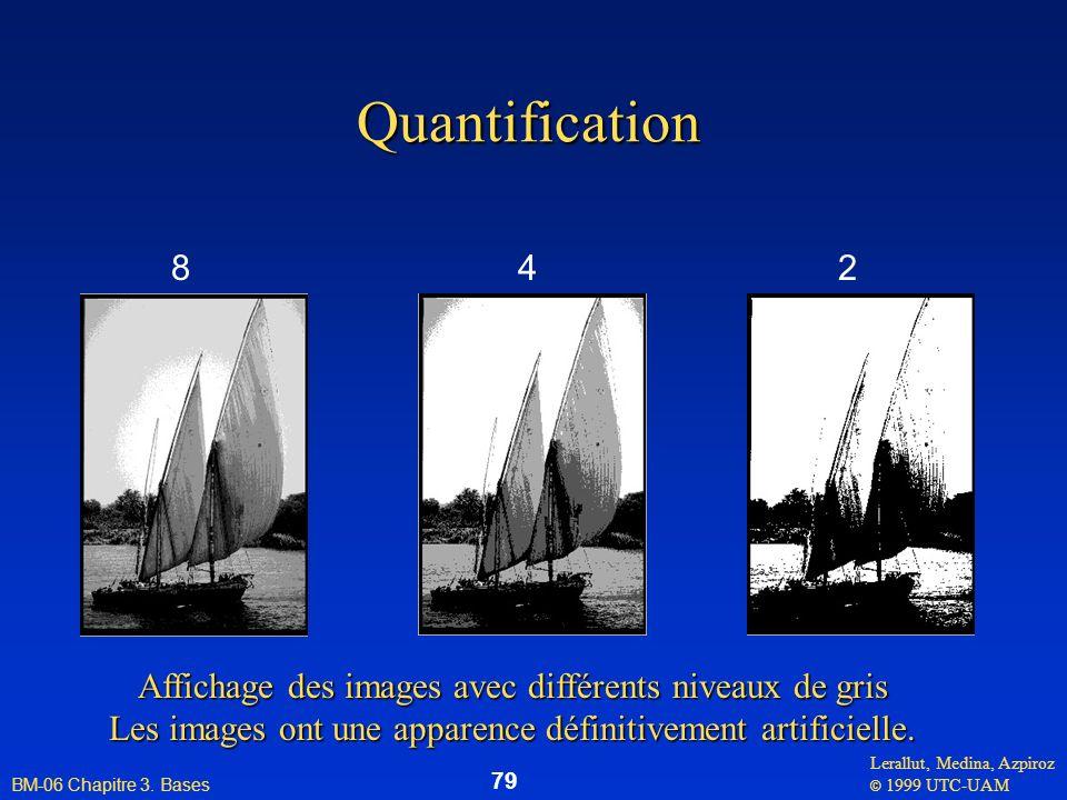 Lerallut, Medina, Azpiroz © 1999 UTC-UAM BM-06 Chapitre 3. Bases 79 Quantification 842 Affichage des images avec différents niveaux de gris Les images