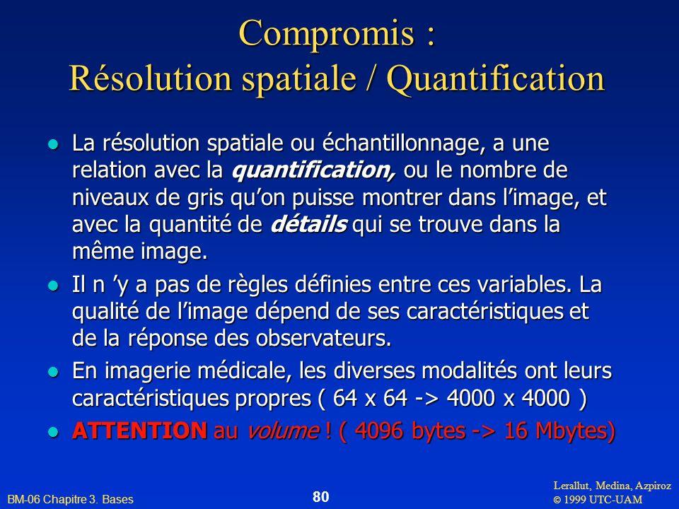 Lerallut, Medina, Azpiroz © 1999 UTC-UAM BM-06 Chapitre 3. Bases 80 Compromis : Résolution spatiale / Quantification l La résolution spatiale ou échan