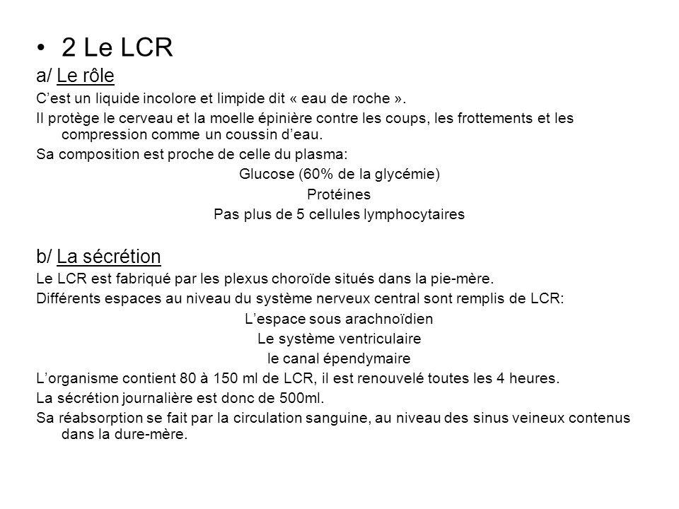 2 Le LCR a/ Le rôle Cest un liquide incolore et limpide dit « eau de roche ». Il protège le cerveau et la moelle épinière contre les coups, les frotte