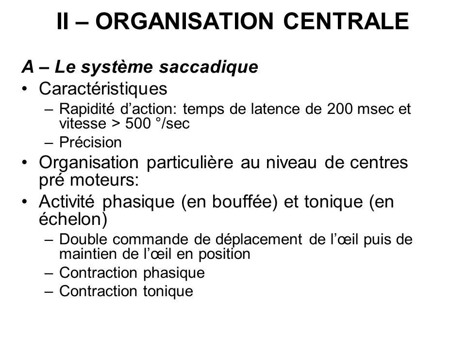 II – ORGANISATION CENTRALE A – Le système saccadique Caractéristiques –Rapidité daction: temps de latence de 200 msec et vitesse > 500 °/sec –Précisio