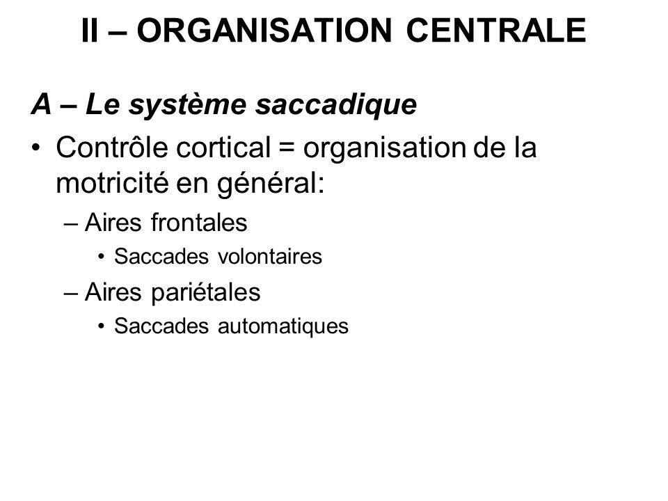 II – ORGANISATION CENTRALE A – Le système saccadique Contrôle cortical = organisation de la motricité en général: –Aires frontales Saccades volontaire