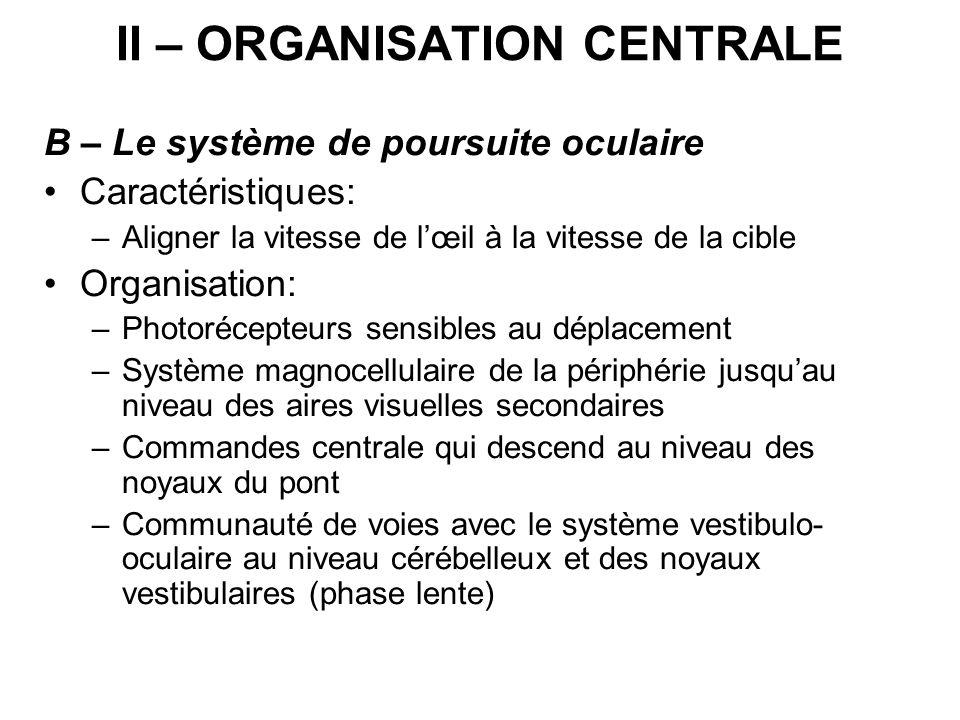 II – ORGANISATION CENTRALE B – Le système de poursuite oculaire Caractéristiques: –Aligner la vitesse de lœil à la vitesse de la cible Organisation: –