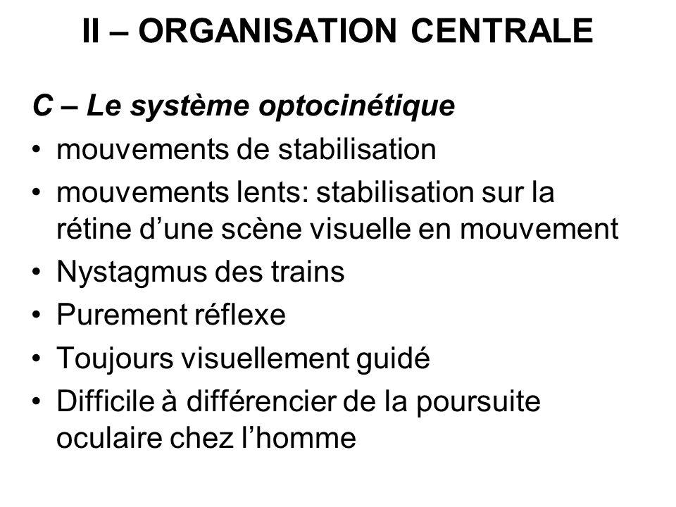 II – ORGANISATION CENTRALE C – Le système optocinétique mouvements de stabilisation mouvements lents: stabilisation sur la rétine dune scène visuelle
