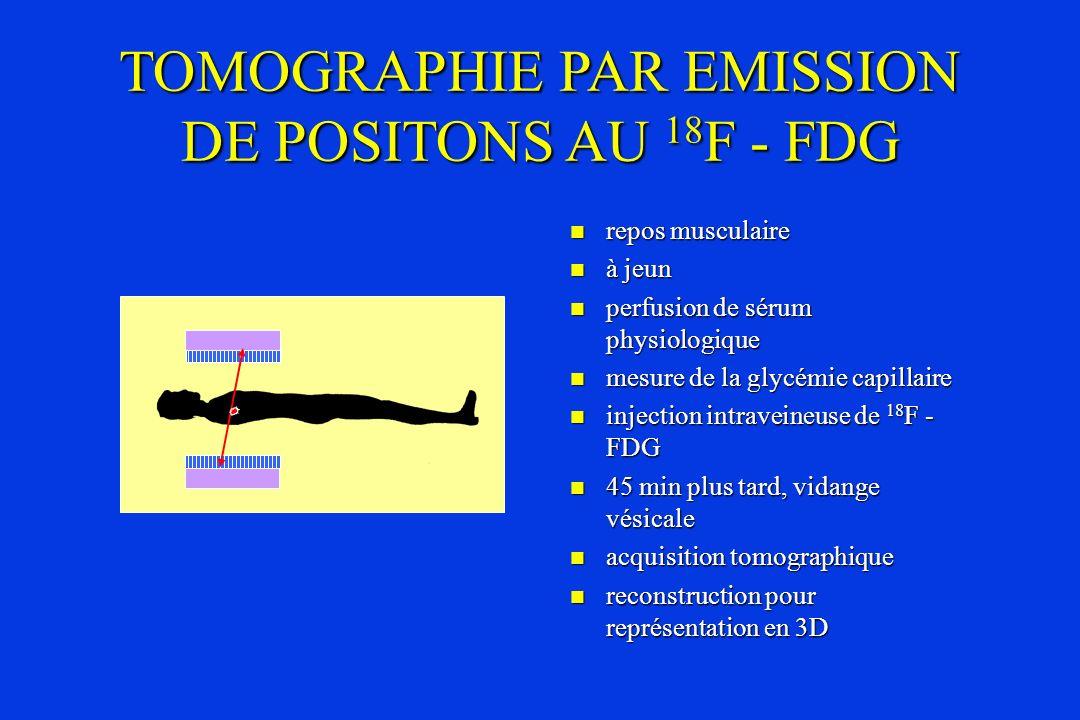 TOMOGRAPHIE PAR EMISSION DE POSITONS AU 18 F - FDG repos musculaire repos musculaire à jeun à jeun perfusion de sérum physiologique perfusion de sérum