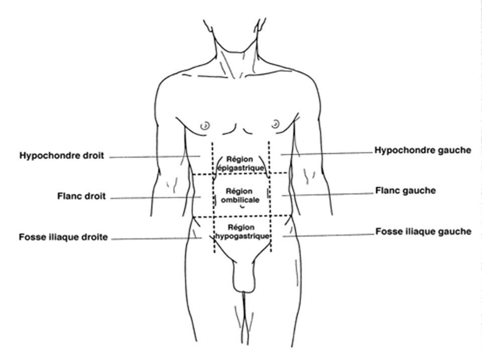 Diagnostics différentiels - boule oesophagienne : troubles fonctionnels déclenchés par langoisse… - affections ORL (angine) : gêne liée à linflammation pharyngée… Causes - K de loesophage +++ : alcoolo-tabagique, homme, âge moyen.