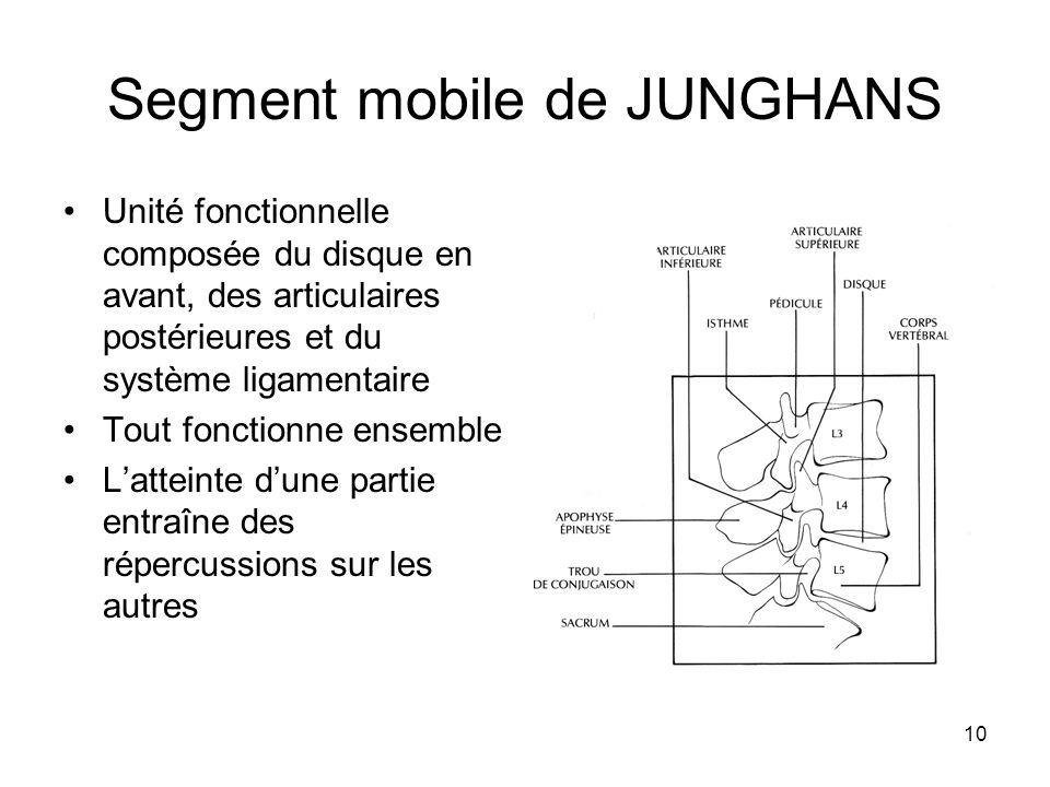 10 Segment mobile de JUNGHANS Unité fonctionnelle composée du disque en avant, des articulaires postérieures et du système ligamentaire Tout fonctionn