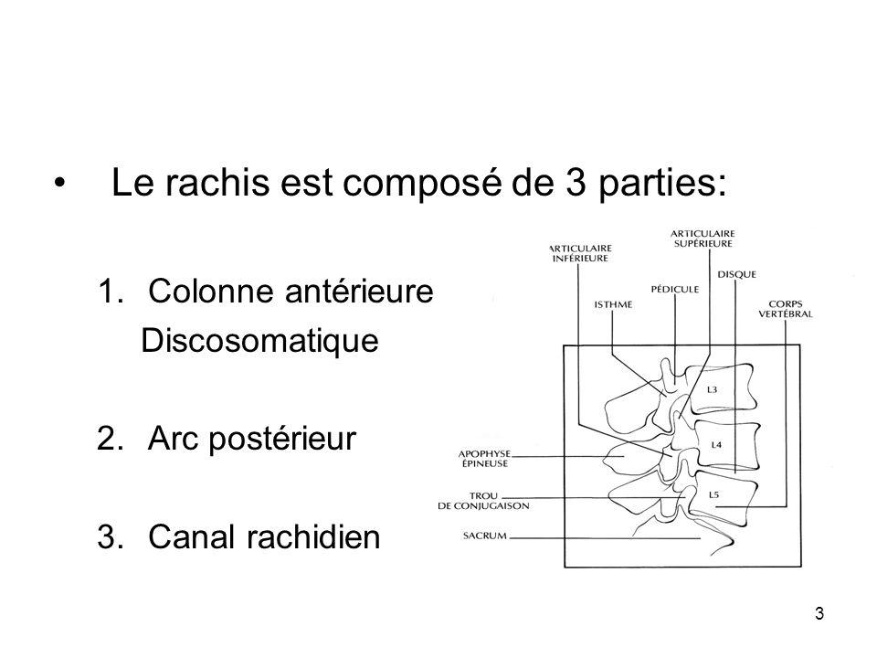 3 Le rachis est composé de 3 parties: 1.Colonne antérieure Discosomatique 2.Arc postérieur 3.Canal rachidien