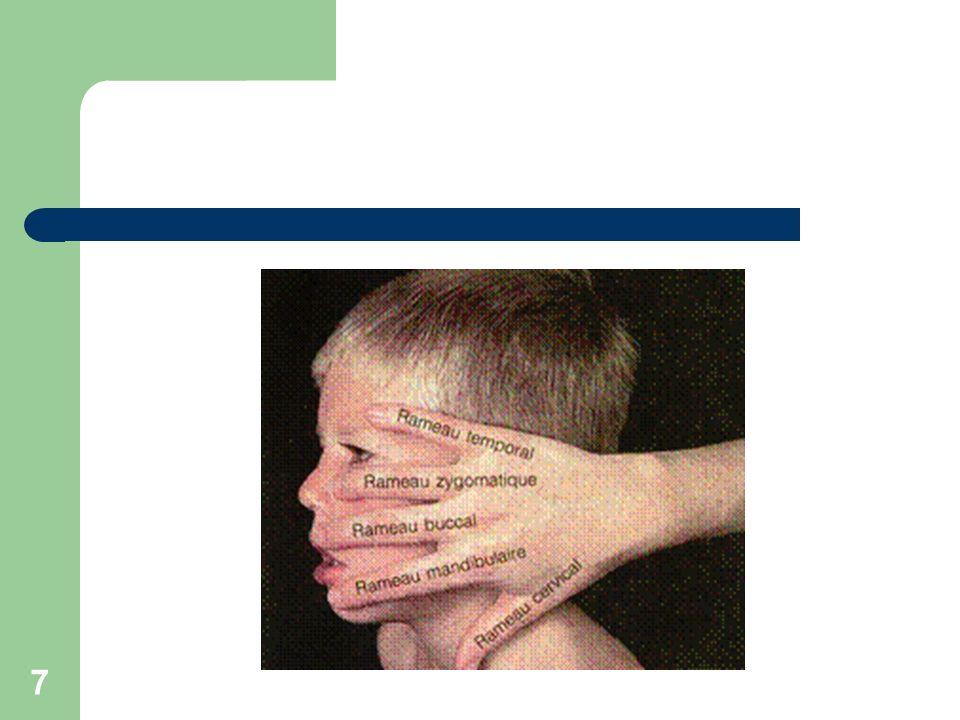 18 PF de Bell ou a frigore Idiopathique Virale Signes typiques (PF unilatérale rapide, contexte viral qlq jr avt, signes datteinte des ô nerfs) Évolution spontanée vers la guérison en 3 à 6 semaines Séquelles TTT: antiviral et corticothérapie