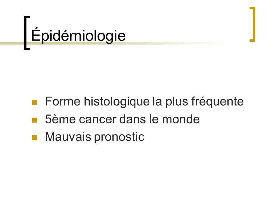Épidémiologie Forme histologique la plus fréquente 5ème cancer dans le monde Mauvais pronostic