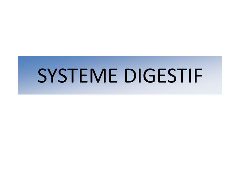 Gastroscopie: compression extrinsèque Disparition de la compression après ponction écho guidée de la vésicule biliaire