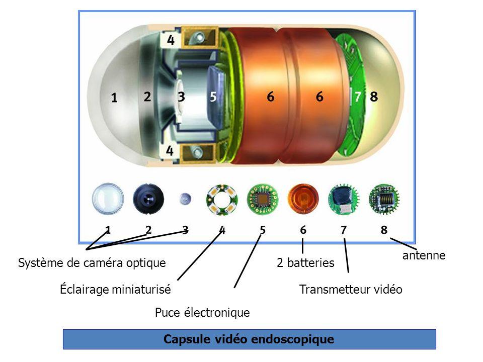 Système de caméra optique Éclairage miniaturisé Puce électronique 2 batteries Transmetteur vidéo antenne Capsule vidéo endoscopique