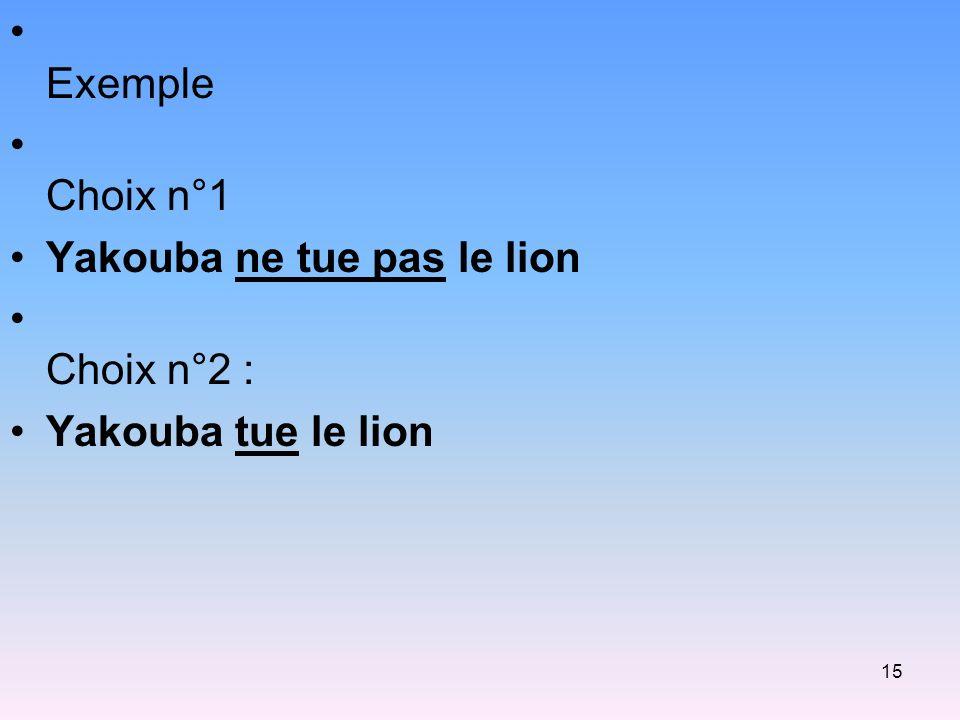 15 Exemple Choix n°1 Yakouba ne tue pas le lion Choix n°2 : Yakouba tue le lion