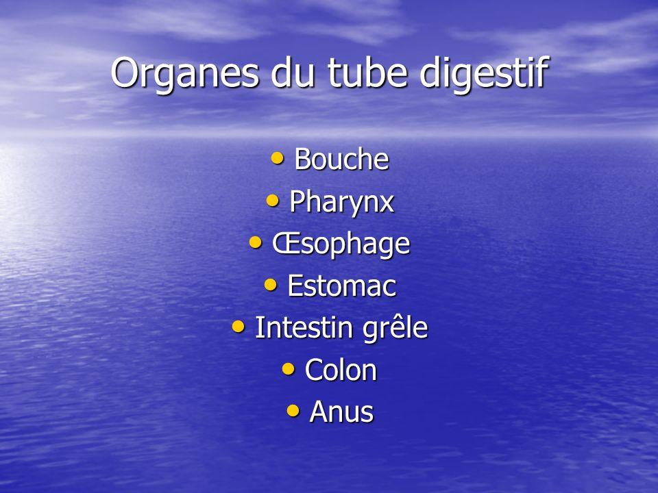 Test respiratoire au glucose ou à lhydrogène Test respiratoire au glucose ou à lhydrogène PBH PBH Coproculture Coproculture