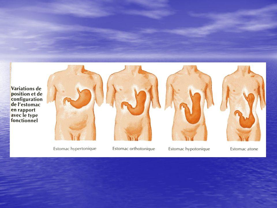 Examens complémentaires 1.Endoscopie digestive 2.