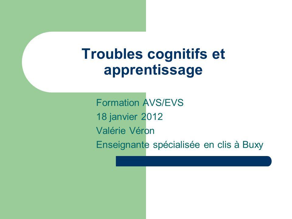 Troubles cognitifs et apprentissage Formation AVS/EVS 18 janvier 2012 Valérie Véron Enseignante spécialisée en clis à Buxy