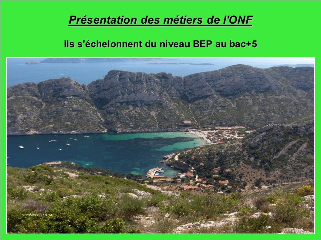 Présentation des métiers de l'ONF Ils s'échelonnent du niveau BEP au bac+5