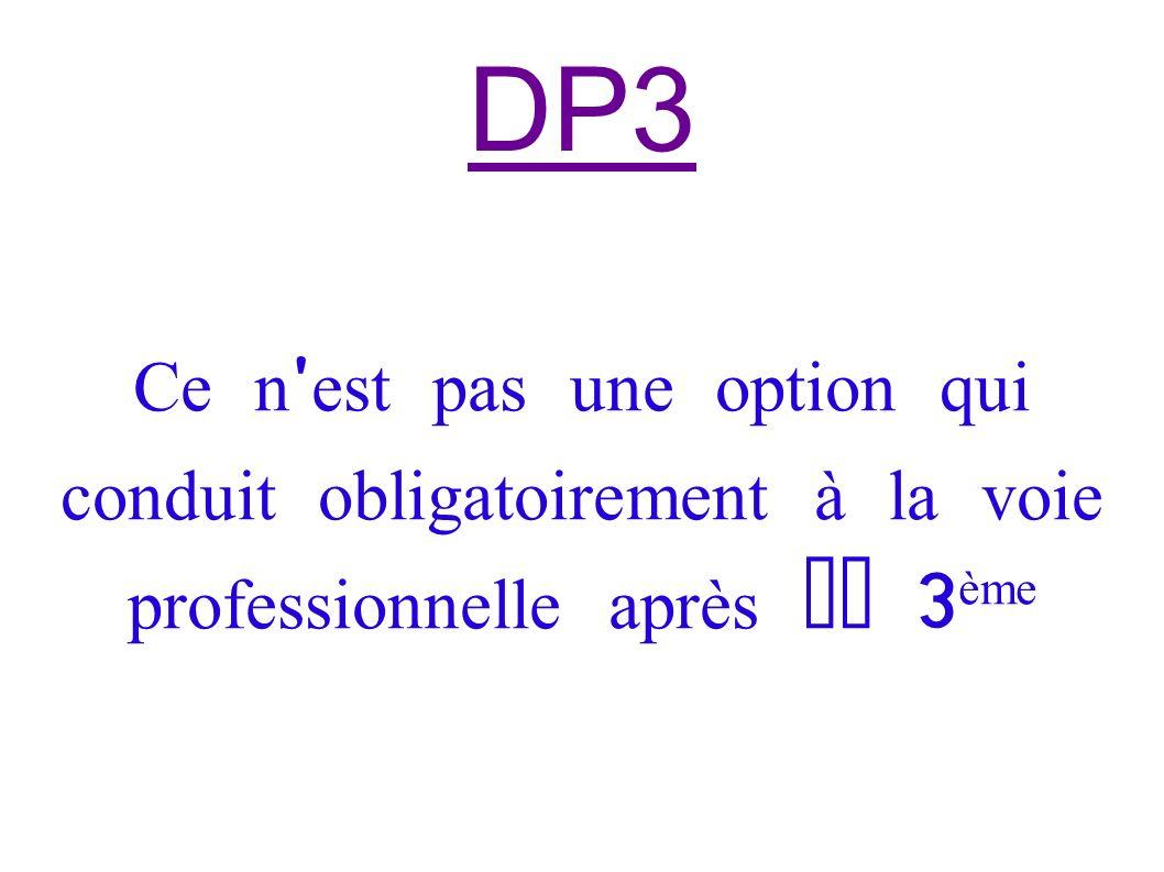 DP3 Ce n ' est pas une option qui conduit obligatoirement à la voie professionnelle après la 3 ème