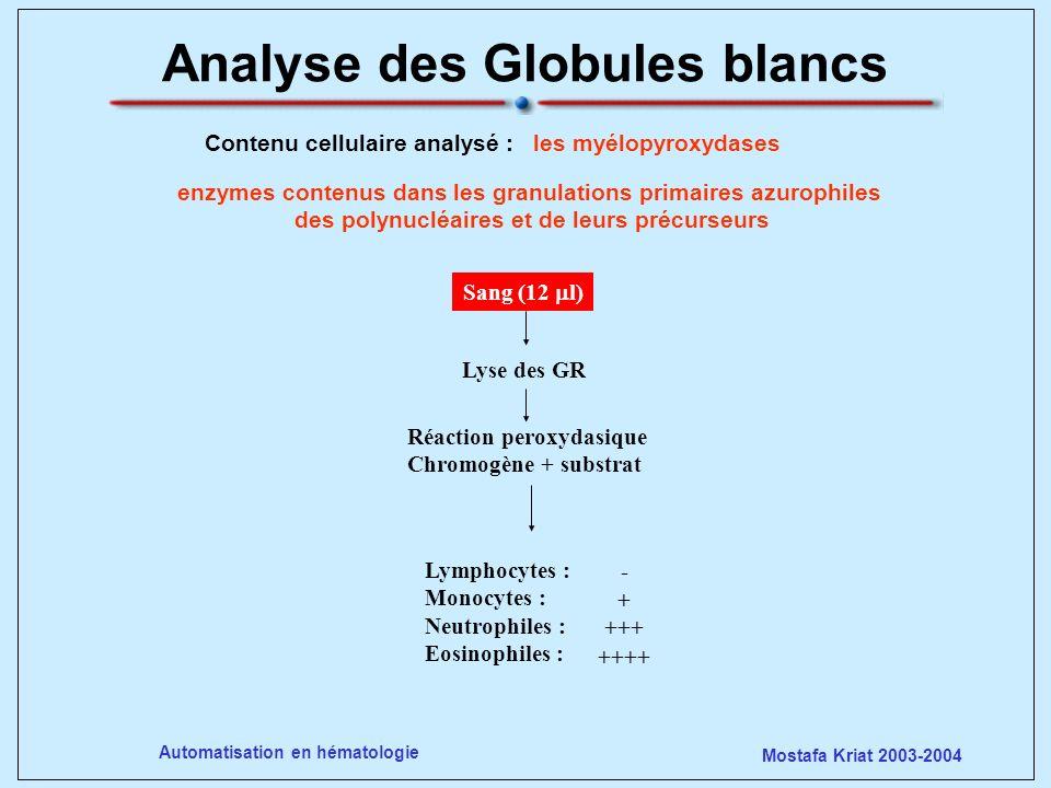 Mostafa Kriat 2003-2004 Automatisation en hématologie Analyse des Globules blancs enzymes contenus dans les granulations primaires azurophiles des pol