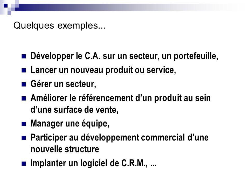 Quelques exemples... Développer le C.A. sur un secteur, un portefeuille, Lancer un nouveau produit ou service, Gérer un secteur, Améliorer le référenc