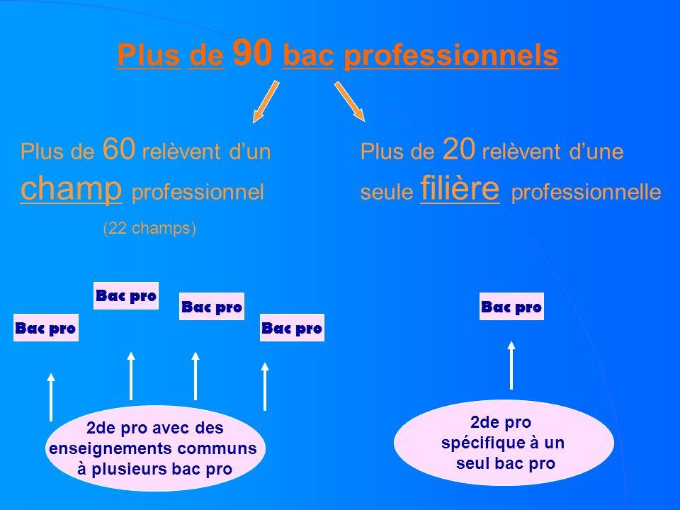 Plus de 90 bac professionnels Plus de 60 relèvent dun champ professionnel (22 champs) Plus de 20 relèvent dune seule filière professionnelle 2de pro a