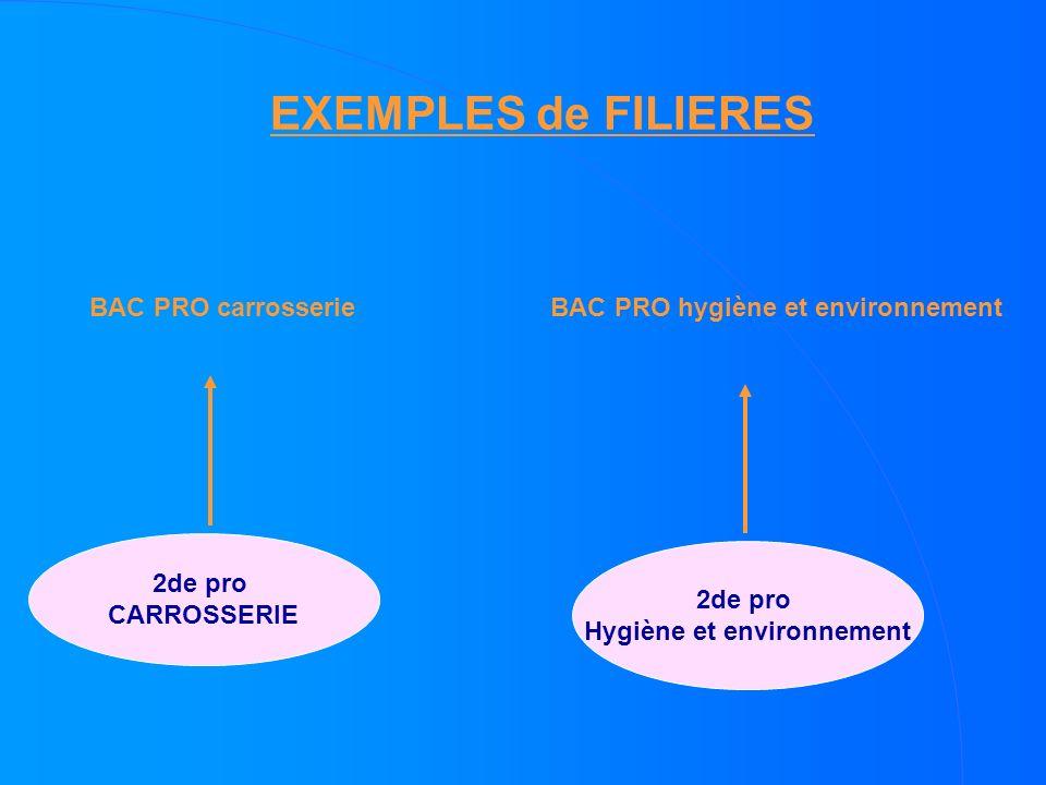 EXEMPLES de FILIERES 2de pro Hygiène et environnement 2de pro CARROSSERIE BAC PRO carrosserieBAC PRO hygiène et environnement