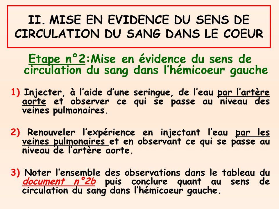 II. MISE EN EVIDENCE DU SENS DE CIRCULATION DU SANG DANS LE COEUR Etape n°2:Mise en évidence du sens de circulation du sang dans lhémicoeur gauche 1)