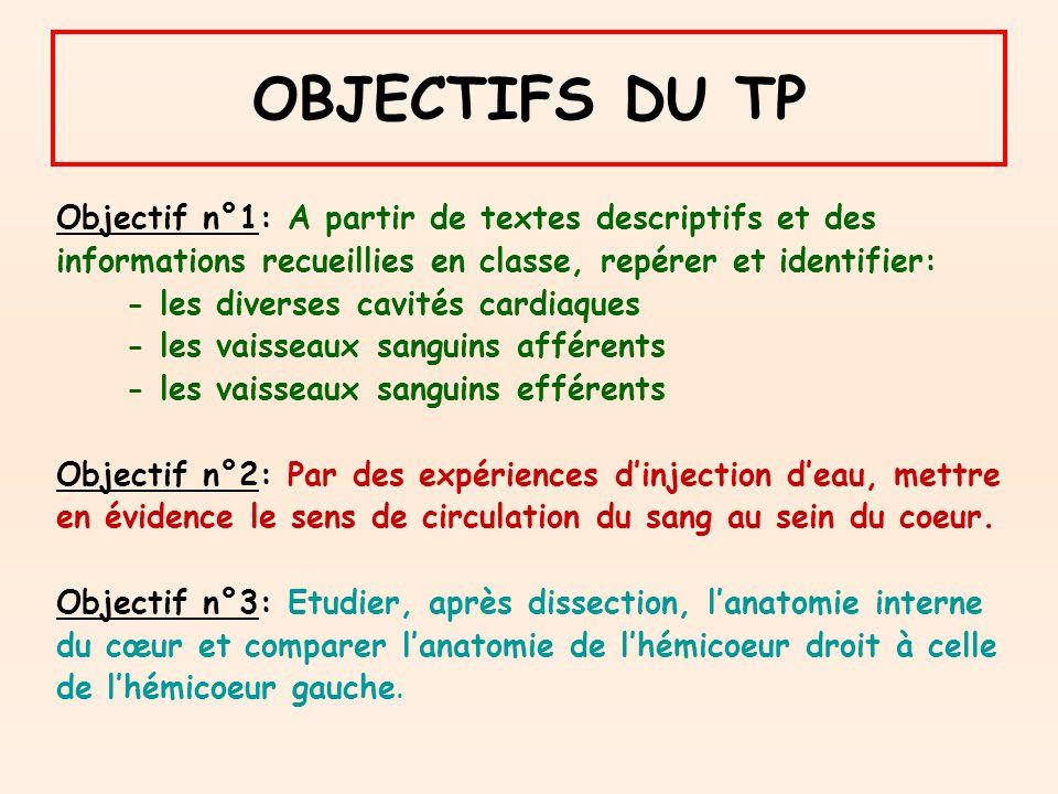 OBJECTIFS DU TP Objectif n°1: A partir de textes descriptifs et des informations recueillies en classe, repérer et identifier: - les diverses cavités cardiaques - les vaisseaux sanguins afférents - les vaisseaux sanguins efférents Objectif n°2: Par des expériences dinjection deau, mettre en évidence le sens de circulation du sang au sein du coeur.