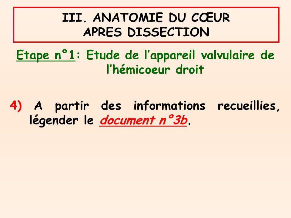 Etape n°1: Etude de lappareil valvulaire de lhémicoeur droit 4) A partir des informations recueillies, légender le document n°3b.