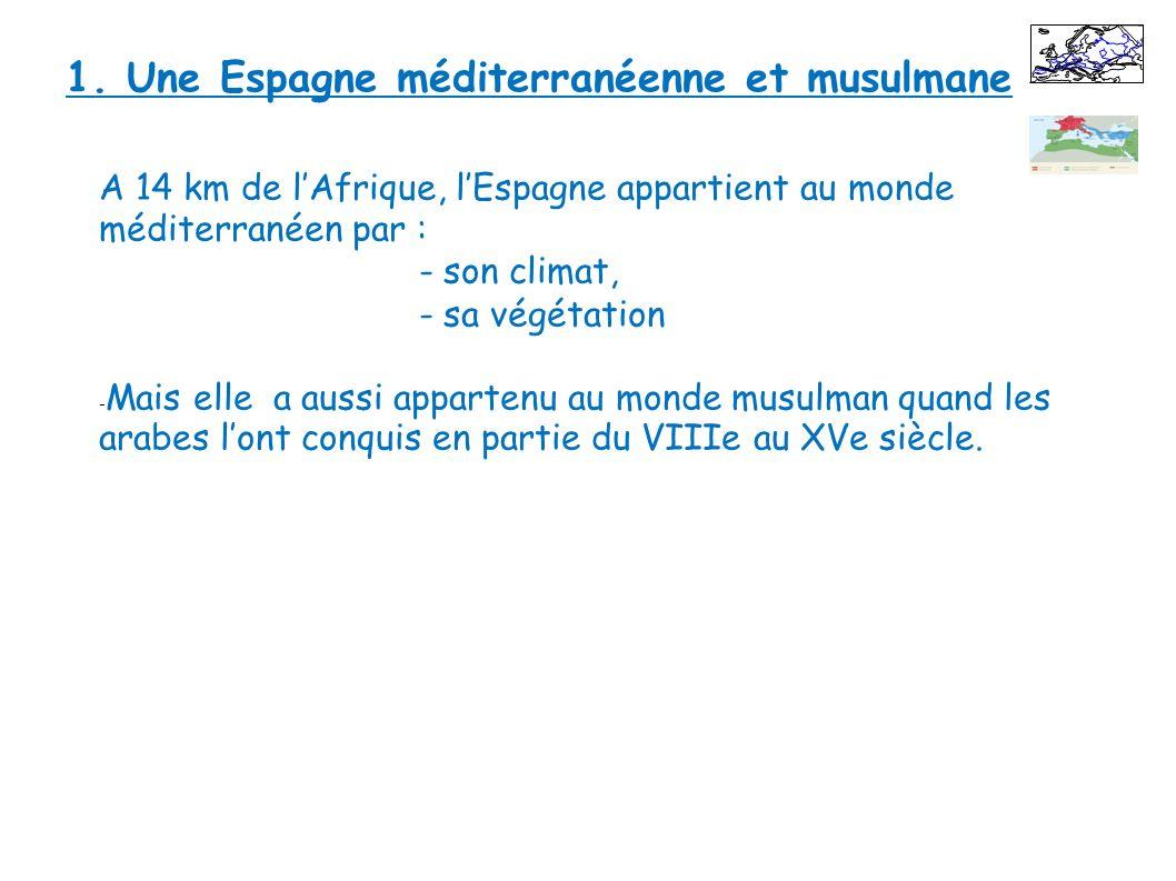 A 14 km de lAfrique, lEspagne appartient au monde méditerranéen par : - son climat, - sa végétation - Mais elle a aussi appartenu au monde musulman qu