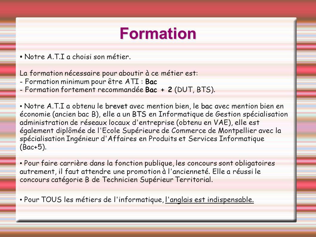 Niveau de formation initial des ATI 164476147 niveau VI (certificat d étude) niveau V (CAP, BEP) niveau IV (BAC) niveau III (BTS, IUT, DEUG) niveau II (licence, maitrise) niveau I (DEA, DESS) Un tiers des ATI a un niveau de formation inférieur à bac+2, et 5% dentre eux nont pas le bac.