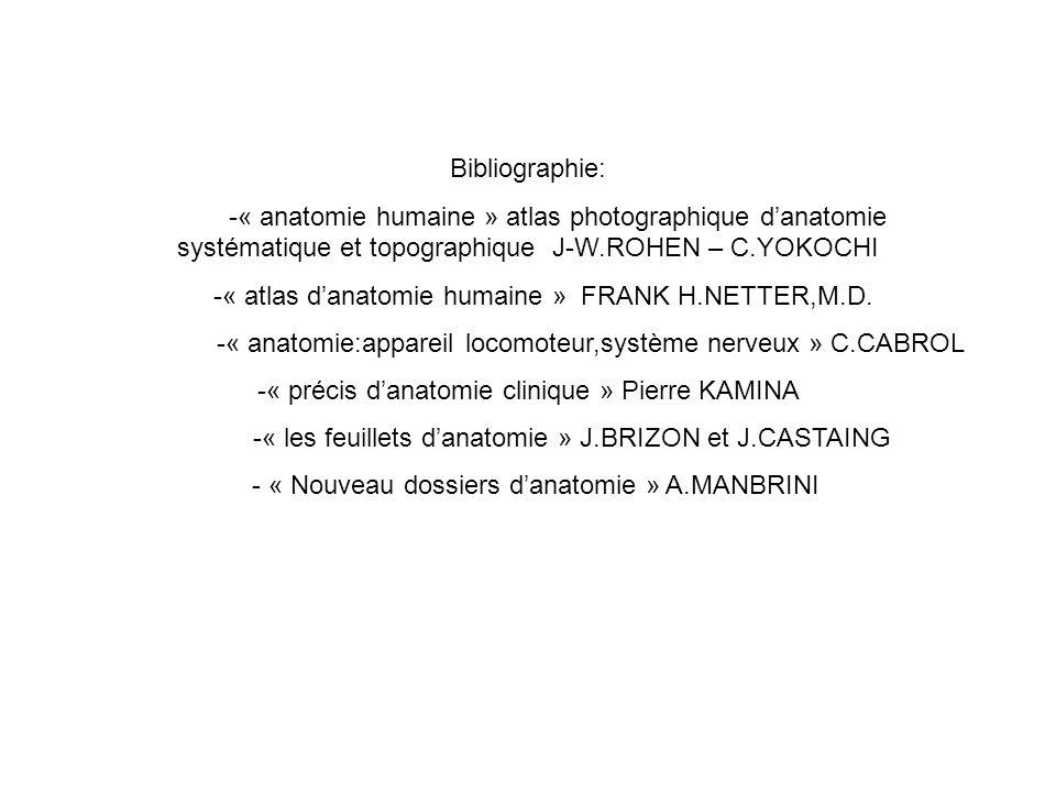 Bibliographie: -« anatomie humaine » atlas photographique danatomie systématique et topographique J-W.ROHEN – C.YOKOCHI -« atlas danatomie humaine » FRANK H.NETTER,M.D.