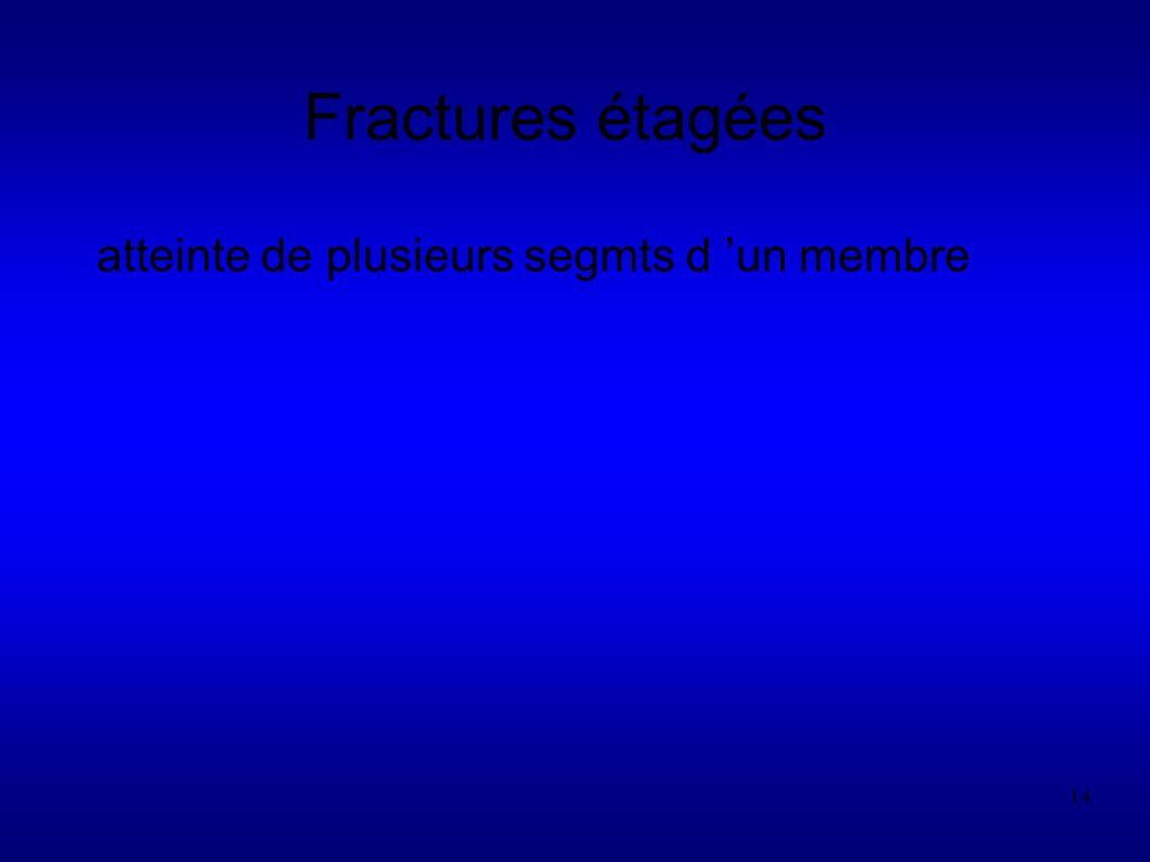 14 Fractures étagées atteinte de plusieurs segmts d un membre