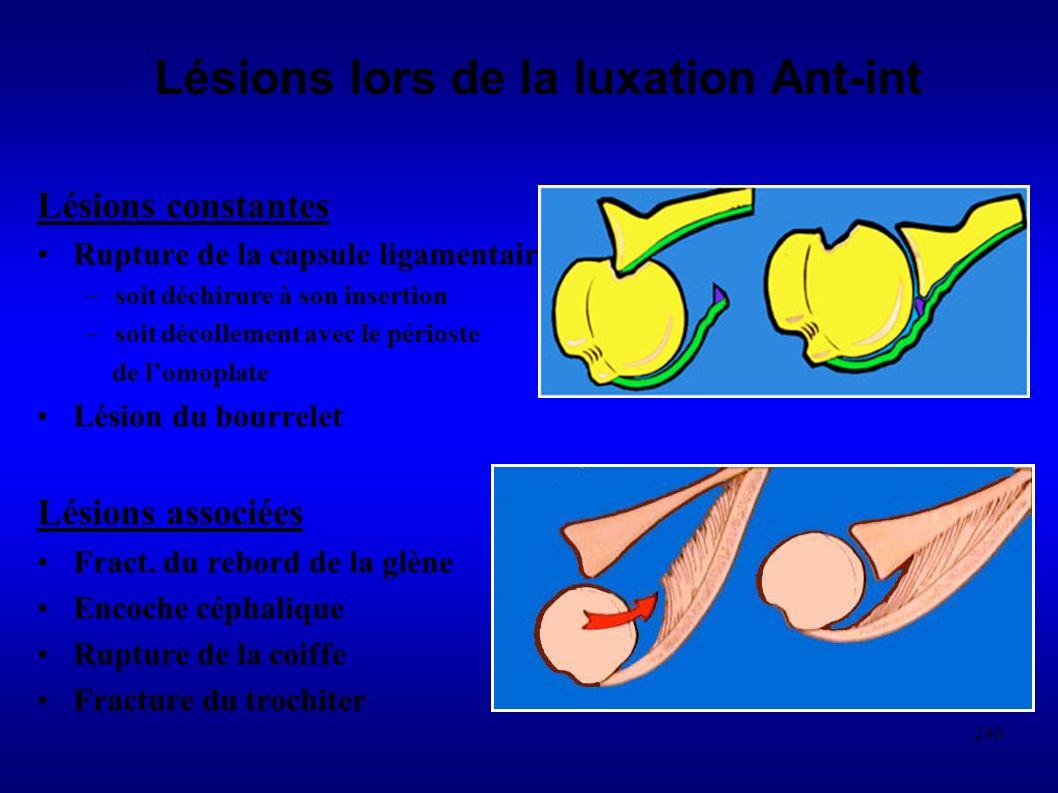 240 Lésions lors de la luxation Ant-int Lésions constantes Rupture de la capsule ligamentaire –soit déchirure à son insertion –soit décollement avec le périoste de lomoplate Lésion du bourrelet Lésions associées Fract.
