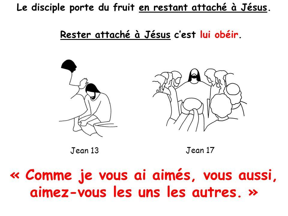 1 er juillet 2012 Le disciple porte du fruit en restant attaché à Jésus.