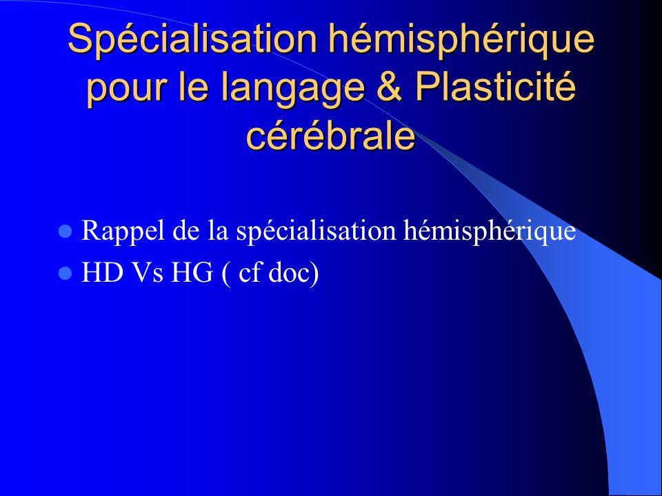 Spécialisation hémisphérique pour le langage & Plasticité cérébrale Rappel de la spécialisation hémisphérique HD Vs HG ( cf doc)