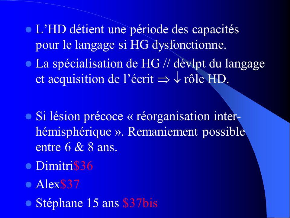 LHD détient une période des capacités pour le langage si HG dysfonctionne. La spécialisation de HG // dévlpt du langage et acquisition de lécrit rôle