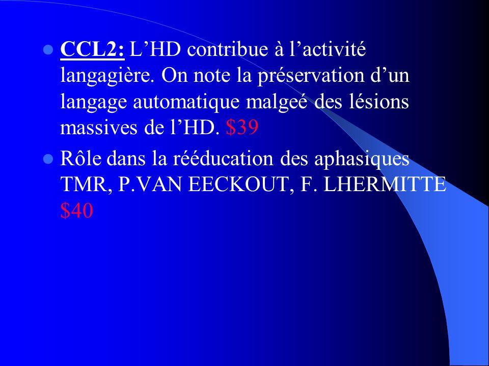 CCL2: LHD contribue à lactivité langagière. On note la préservation dun langage automatique malgeé des lésions massives de lHD. $39 Rôle dans la réédu