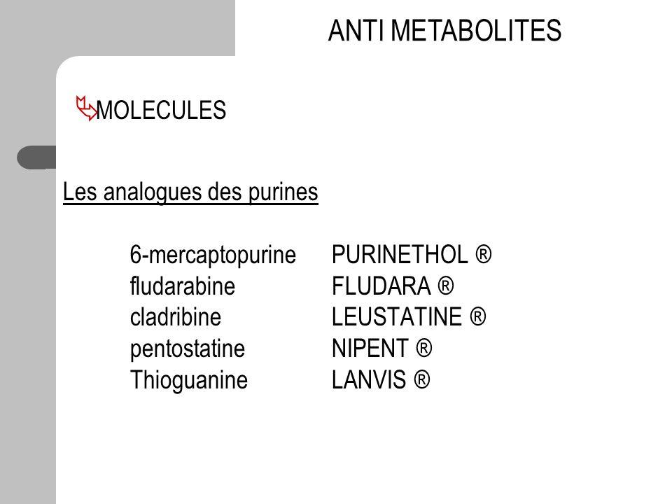 Les analogues des purines 6-mercaptopurinePURINETHOL ® fludarabineFLUDARA ® cladribineLEUSTATINE ® pentostatineNIPENT ® ThioguanineLANVIS ® ANTI METAB