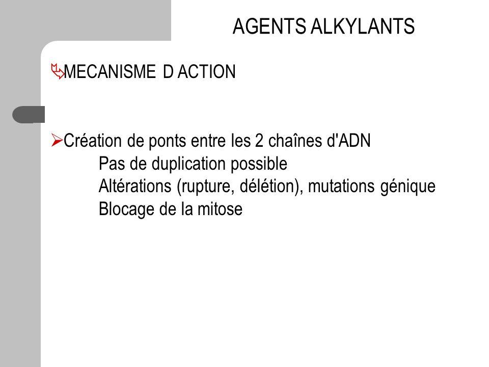 AGENTS ALKYLANTS MECANISME D ACTION Création de ponts entre les 2 chaînes d'ADN Pas de duplication possible Altérations (rupture, délétion), mutations