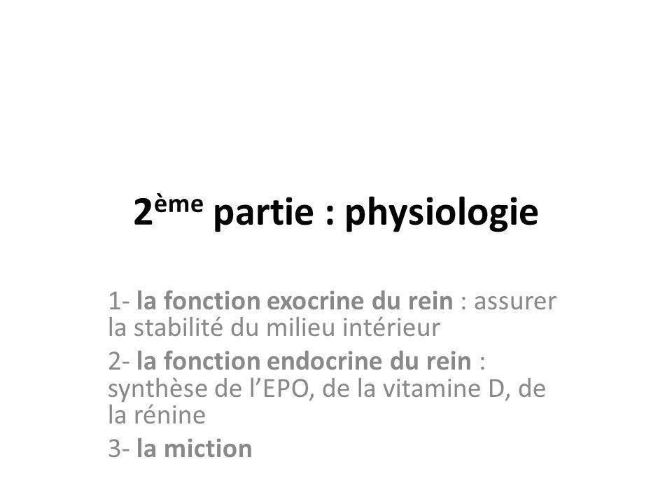 2 ème partie : physiologie 1- la fonction exocrine du rein : assurer la stabilité du milieu intérieur 2- la fonction endocrine du rein : synthèse de l