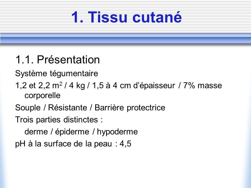 1. Tissu cutané 1.1. Présentation Système tégumentaire 1,2 et 2,2 m 2 / 4 kg / 1,5 à 4 cm dépaisseur / 7% masse corporelle Souple / Résistante / Barri