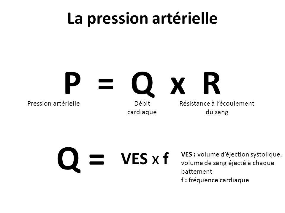 La pression artérielle P = Q x R Pression artérielleDébit cardiaque Résistance à lécoulement du sang Q = VES x f VES : volume déjection systolique, vo