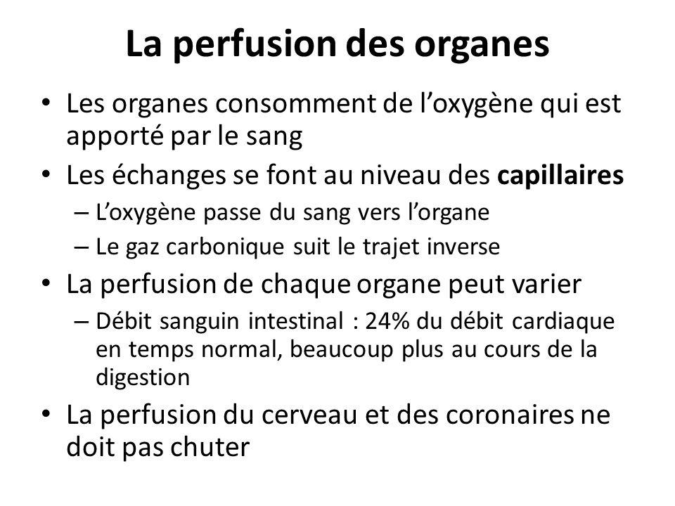 La perfusion des organes Les organes consomment de loxygène qui est apporté par le sang Les échanges se font au niveau des capillaires – Loxygène pass
