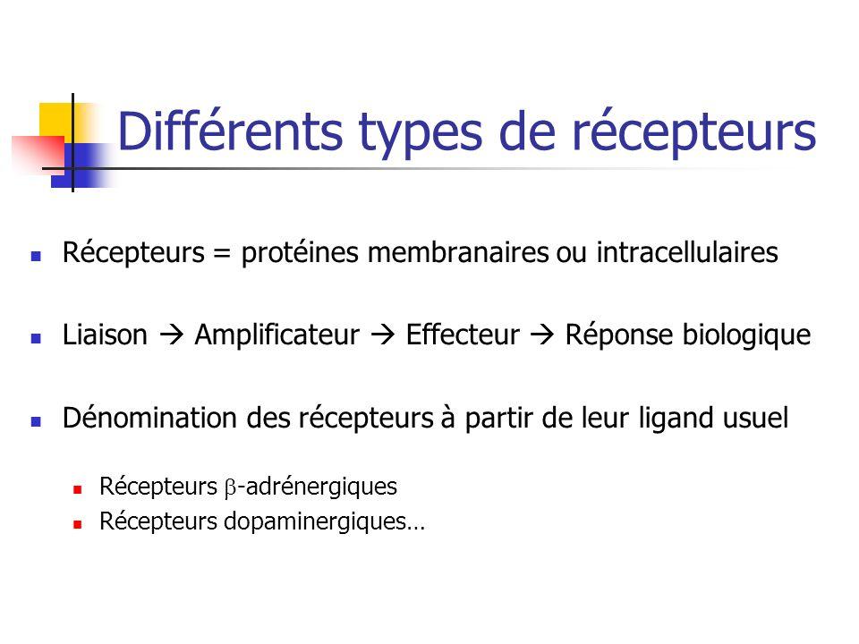 Différents types de récepteurs Récepteurs = protéines membranaires ou intracellulaires Liaison Amplificateur Effecteur Réponse biologique Dénomination des récepteurs à partir de leur ligand usuel Récepteurs -adrénergiques Récepteurs dopaminergiques…