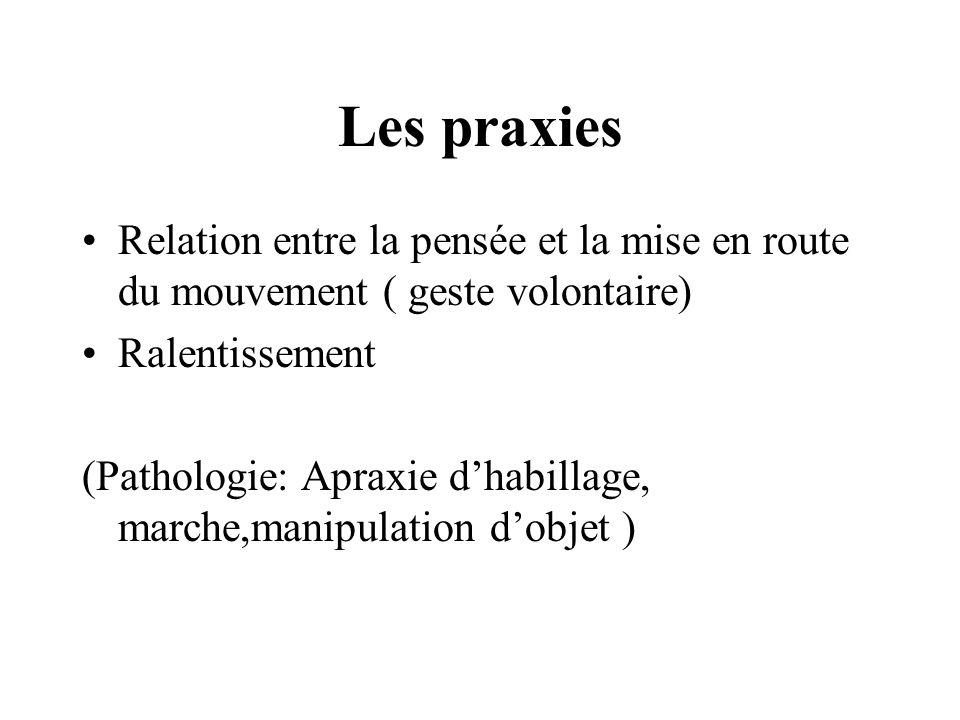Les praxies Relation entre la pensée et la mise en route du mouvement ( geste volontaire) Ralentissement (Pathologie: Apraxie dhabillage, marche,manip