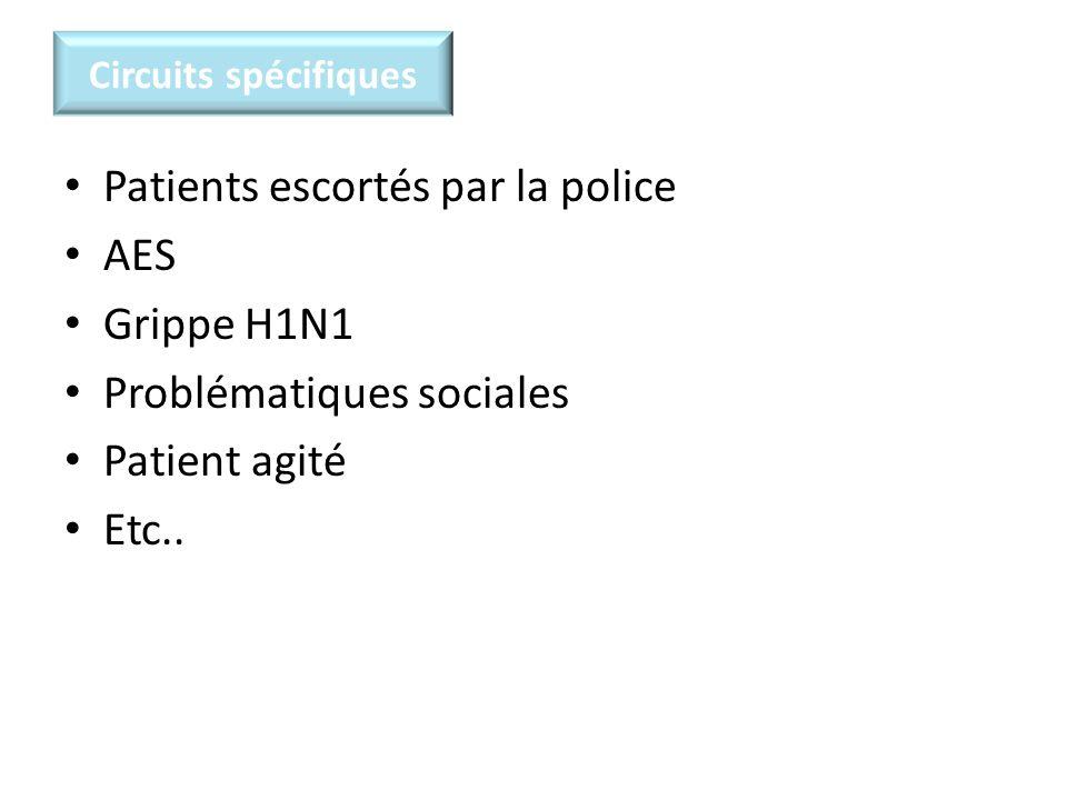 Circuits spécifiques Patients escortés par la police AES Grippe H1N1 Problématiques sociales Patient agité Etc..